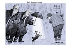 Koch Brothers' Scottie
