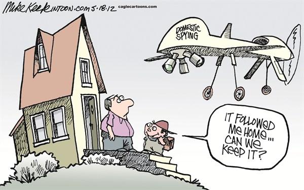 domestic-drone-cartoon