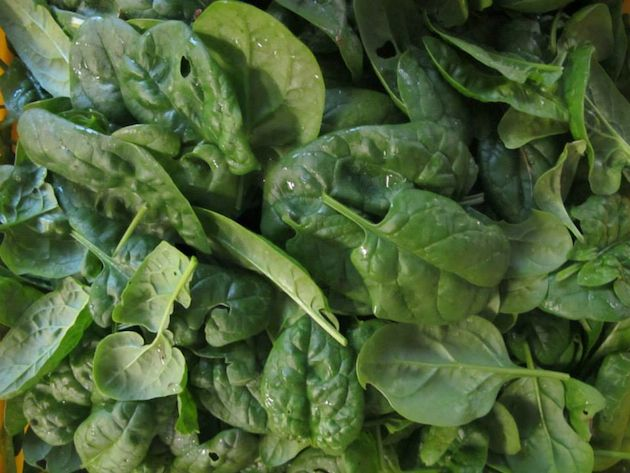spinach_630