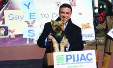 A pet peeve: Rep. Michael Grimm (R-N.Y.) with his dog Sebastian at a press conference Wednesday calling on Amtrak to allow pets onto their trains.