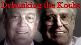 Debunking the Kochs