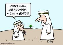 arabs_sunni_shia_muslims_1403185