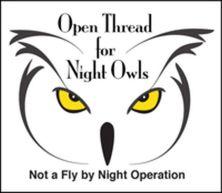 Night_Owl_Yellow_Eyesx