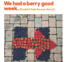 berry_good_week_2015-05-27_0348