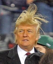Trump, hair