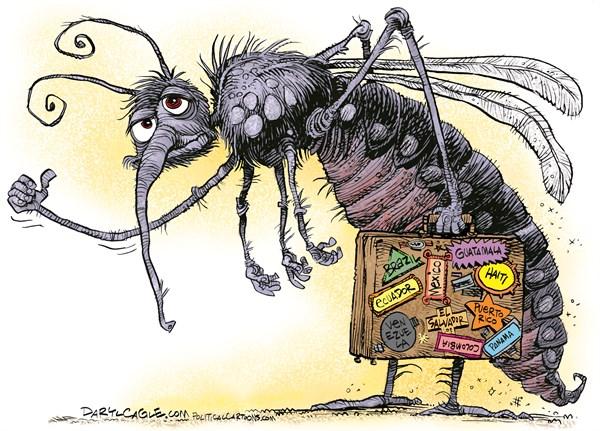 zika 175870_600