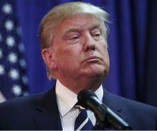 trump-world-is-burning