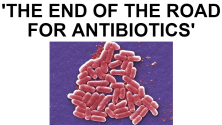 ANTIBIOTICS_2016-05-27_0541