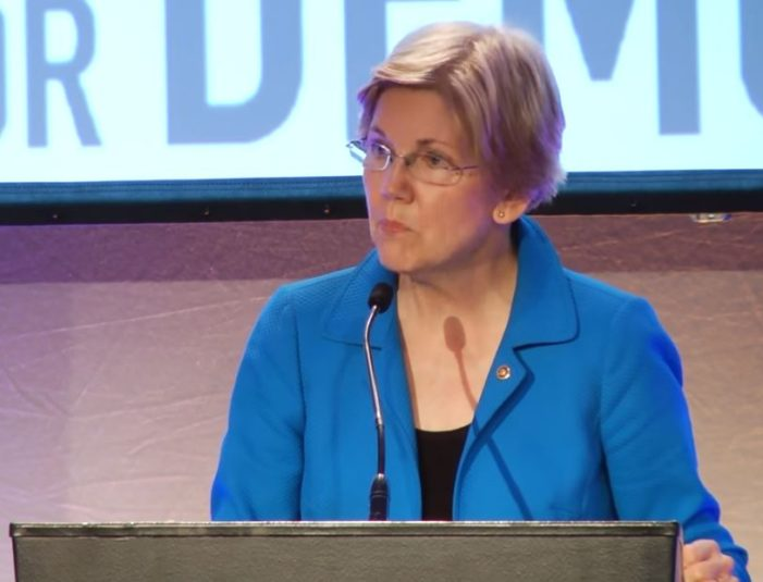 Sen. Elizabeth Warren (D-MA) expertly took apart Donald Trump's economic speech to reveal a plan that is designed to benefit only the rich and corporations.