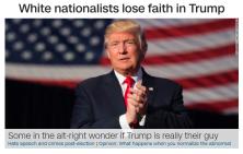 alt_right_2017-01-17_0315